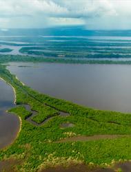 Amazonasbecken