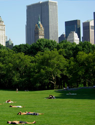 Picknick-Central-Park
