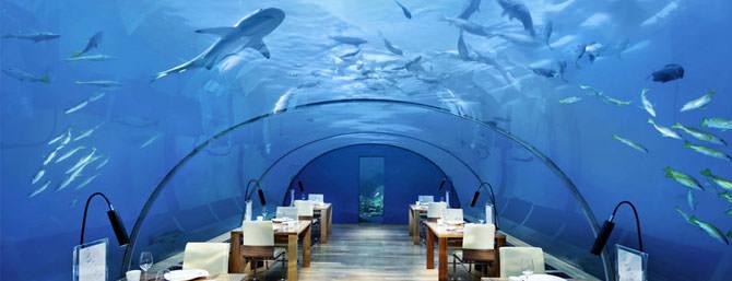 Unterwasserrestaurant Conrad Rangali Maldives