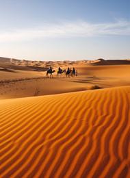 Nordafrika Landesinnere Sahara