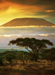Ostafrika Tansania