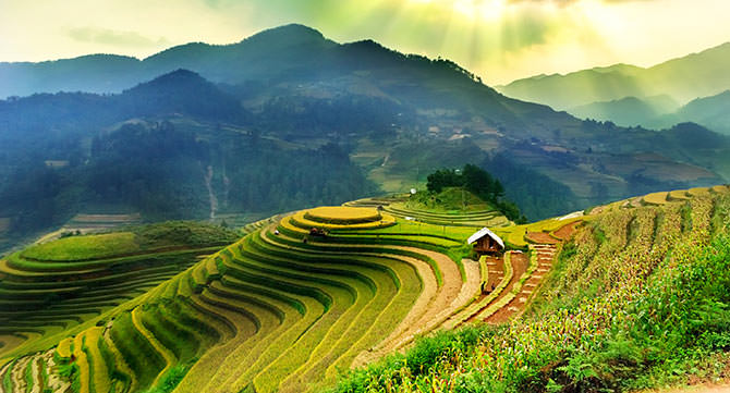 vietnams_reisterassen
